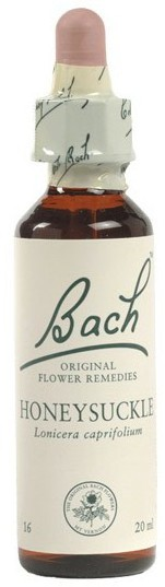 POWER HEALTH Bach Honeysuckle Ανθοΐαμα για την Αντιμετώπιση των Συναισθηματικών Απαιτήσεων της Καθημερινότητας, 20ml
