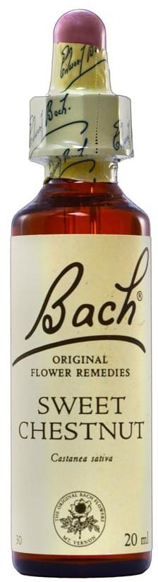 POWER HEALTH Bach Sweet Chestnut Ανθοΐαμα για την Αντιμετώπιση των Συναισθηματικών Απαιτήσεων της Καθημερινότητας, 20ml