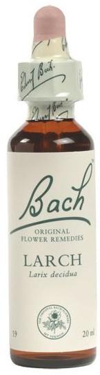 POWER HEALTH Bach Larch Ανθοΐαμα για την Αντιμετώπιση των Συναισθηματικών Απαιτήσεων της Καθημερινότητας, 20ml
