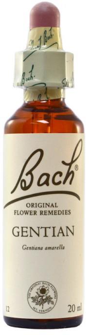 POWER HEALTH Bach Gentian Ανθοΐαμα για την Αντιμετώπιση των Συναισθηματικών Απαιτήσεων της Καθημερινότητας, 20ml