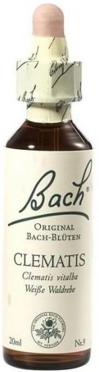POWER HEALTH Bach Clematis Ανθοΐαμα για την Αντιμετώπιση των Συναισθηματικών Απαιτήσεων της Καθημερινότητας, 20ml