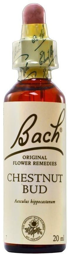 POWER HEALTH Bach Chestnut Bud Ανθοΐαμα για την Αντιμετώπιση των Συναισθηματικών Απαιτήσεων της Καθημερινότητας, 20ml