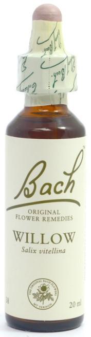 POWER HEALTH Bach Willow Chestnut Ανθοΐαμα για την Αντιμετώπιση των Συναισθηματικών Απαιτήσεων της Καθημερινότητας, 20ml