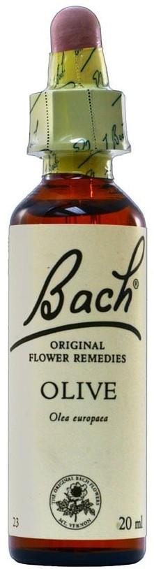 POWER HEALTH Bach Olive Ανθοΐαμα για την Αντιμετώπιση των Συναισθηματικών Απαιτήσεων της Καθημερινότητας, 20ml