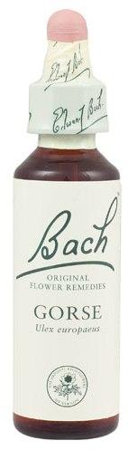 POWER HEALTH Bach Gorse Ανθοΐαμα για την Αντιμετώπιση των Συναισθηματικών Απαιτήσεων της Καθημερινότητας, 20ml